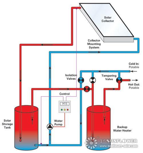Calentadores Solares De Agua Del Sistema De Tipos Solar