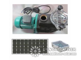 Pompa ad acqua solare per irrigazione di agricoltura for Pompa filtro laghetto solare