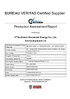 BV certification test report