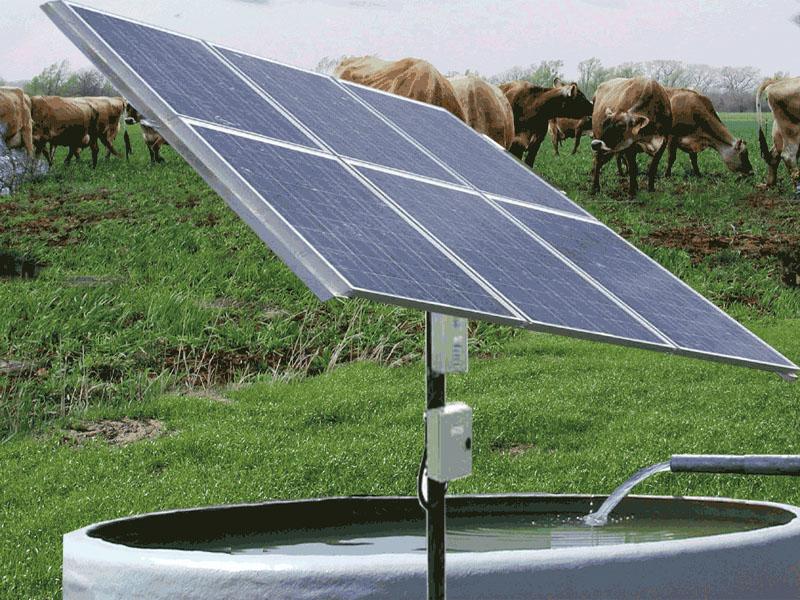 Sunflower solar solar water heater for Bombas solares para fuentes de jardin
